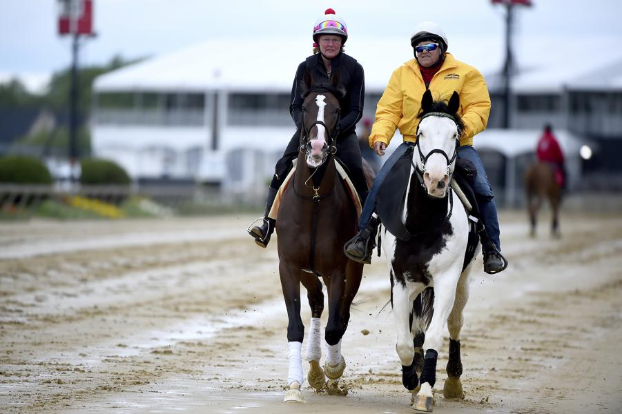 Fading The Favorite And Two Horses To Bet On In The 2019 Preakness Stakes