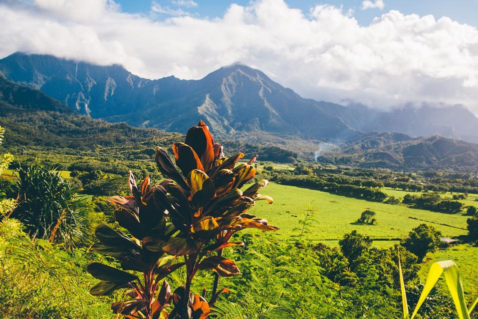 The Best Beach Resorts In Kauai