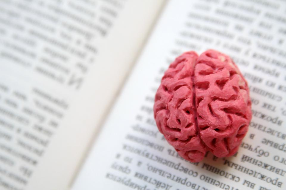 5 Cognitive Biases Smart Executives Should Watch For