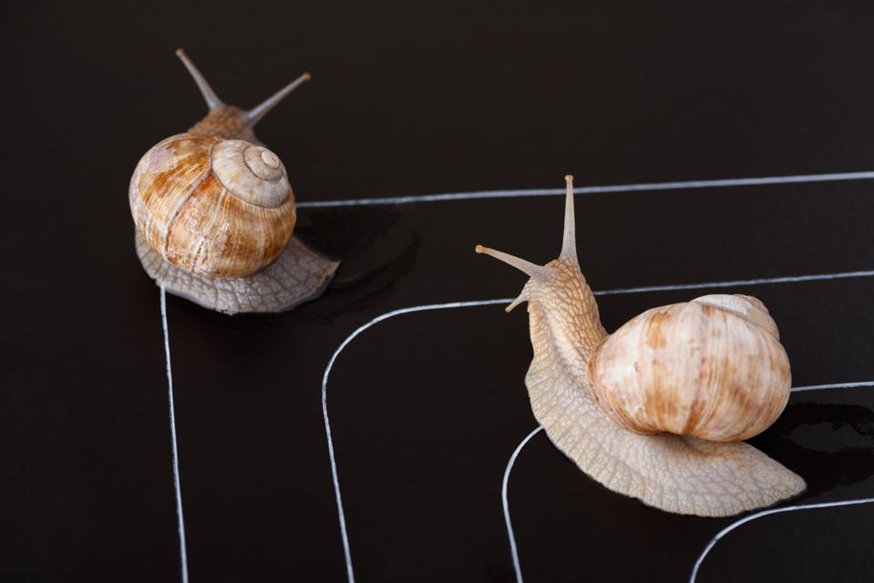 Incredibly Unpopular Advice For CEOs Leading Change: Slow Down