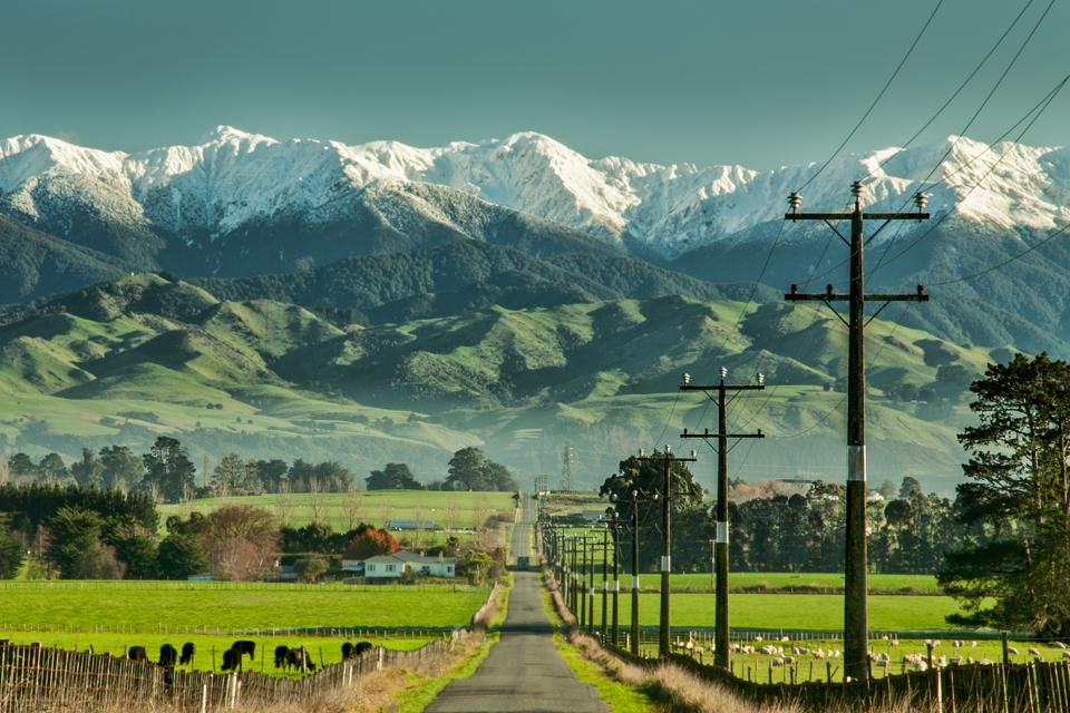 New Zealand's Environment Is In Serious Trouble