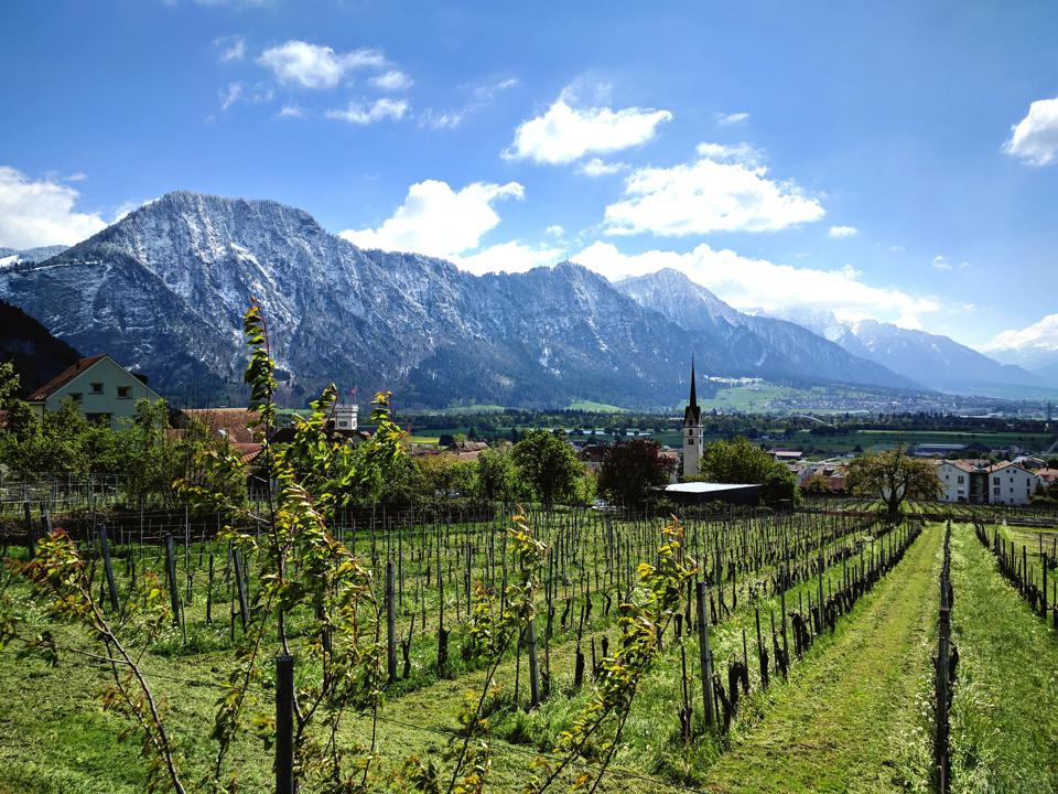 Wine Festivals Happening This Summer In Switzerland, Including One That Takes Place Every 25 Years