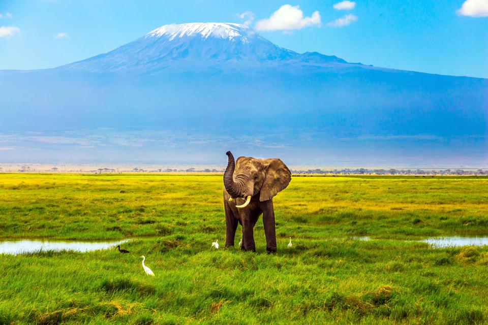 Say It Isn't So: Controversy Arises as Tanzania Plans Cable Car on Mount Kilimanjaro