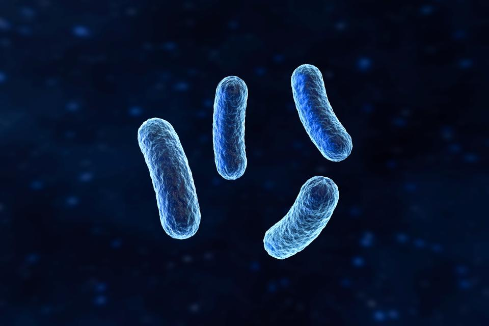 The Shocking Biotech Applications Of Electric Bacteria