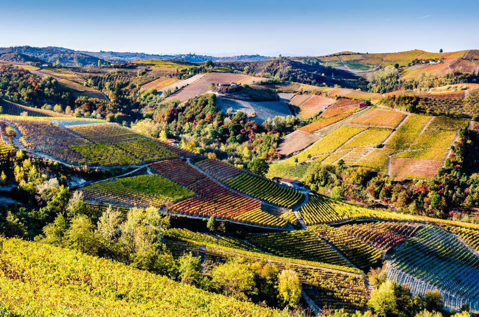 How To Plan A Fabulous Wine Holiday In Italy