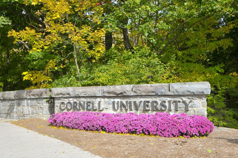 Cornell & Bank Of America Launch Free Courses For Women Entrepreneurs