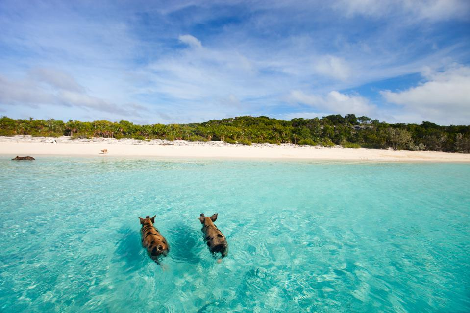 The Worlds Best Beaches Ranked Plus Getaways Millennials - The 15 most unusual and beautiful beaches in the world