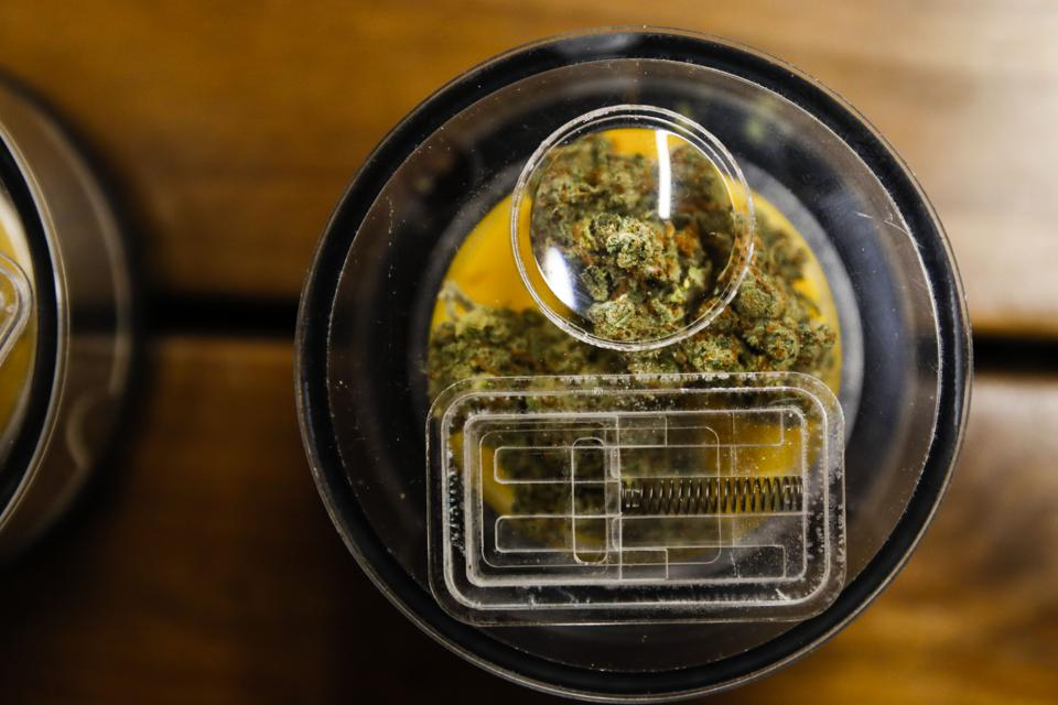 Demand For New Cannabis Stocks Heats Up