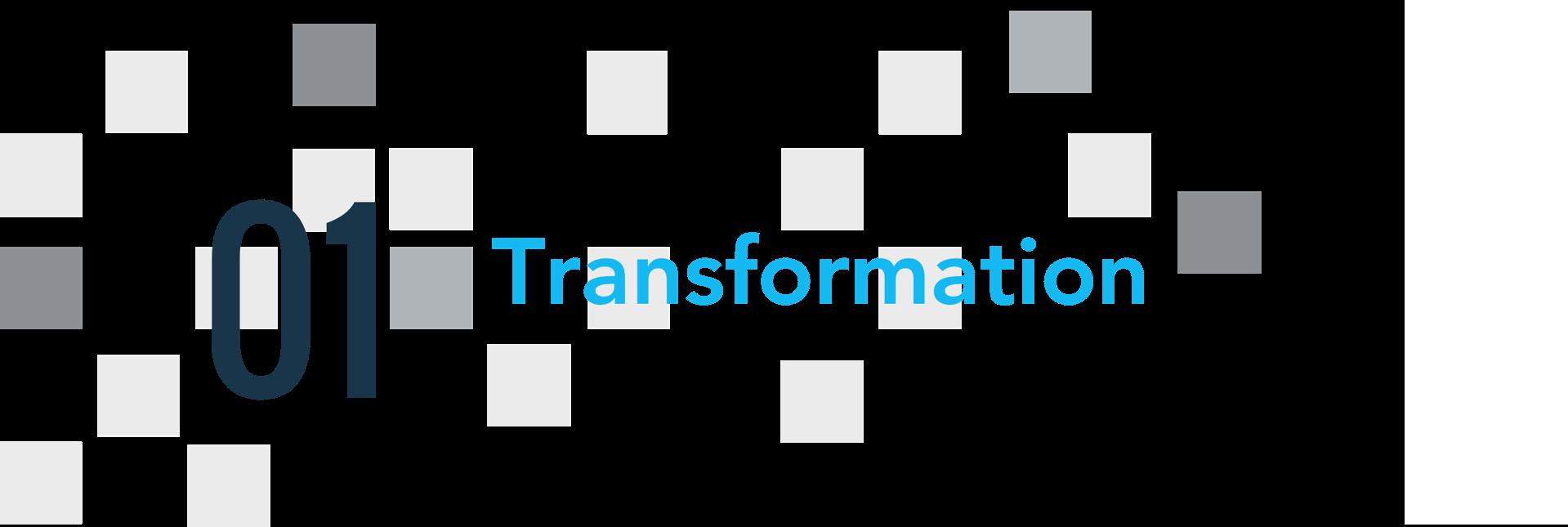 01 трансформация