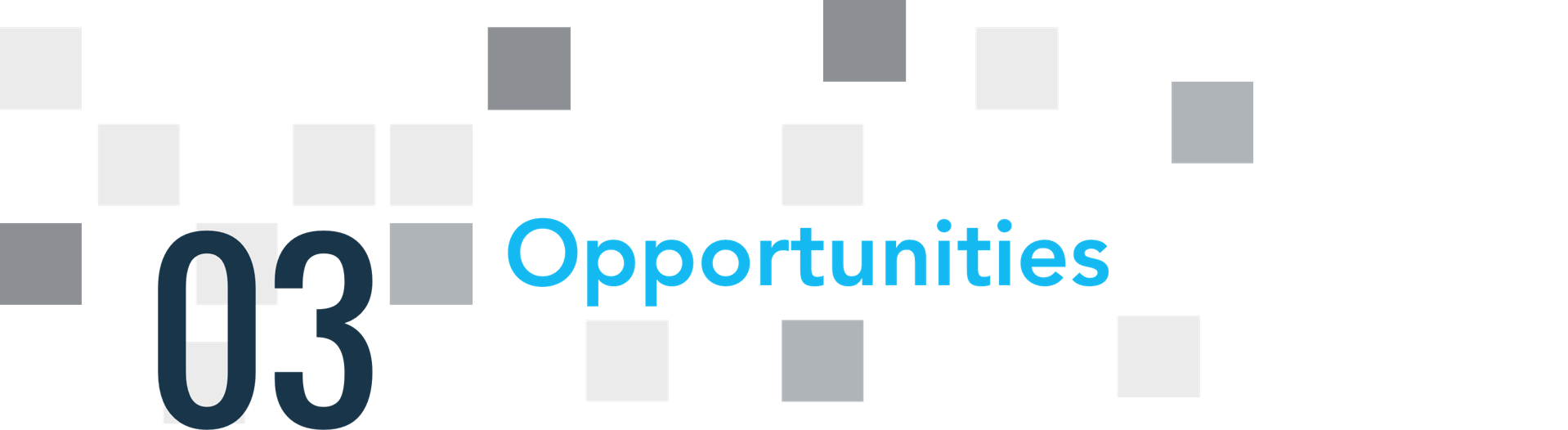 03 opportunities
