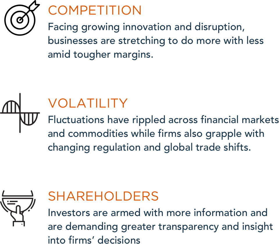 Competition, Volatility and Shareholders