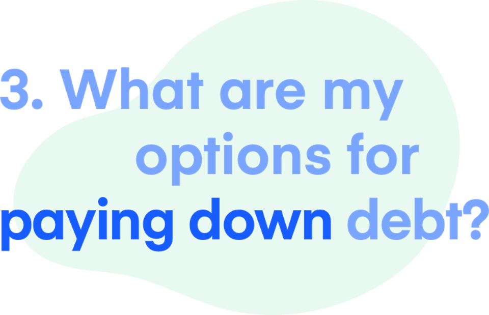 3. What are my options for paying down debt?