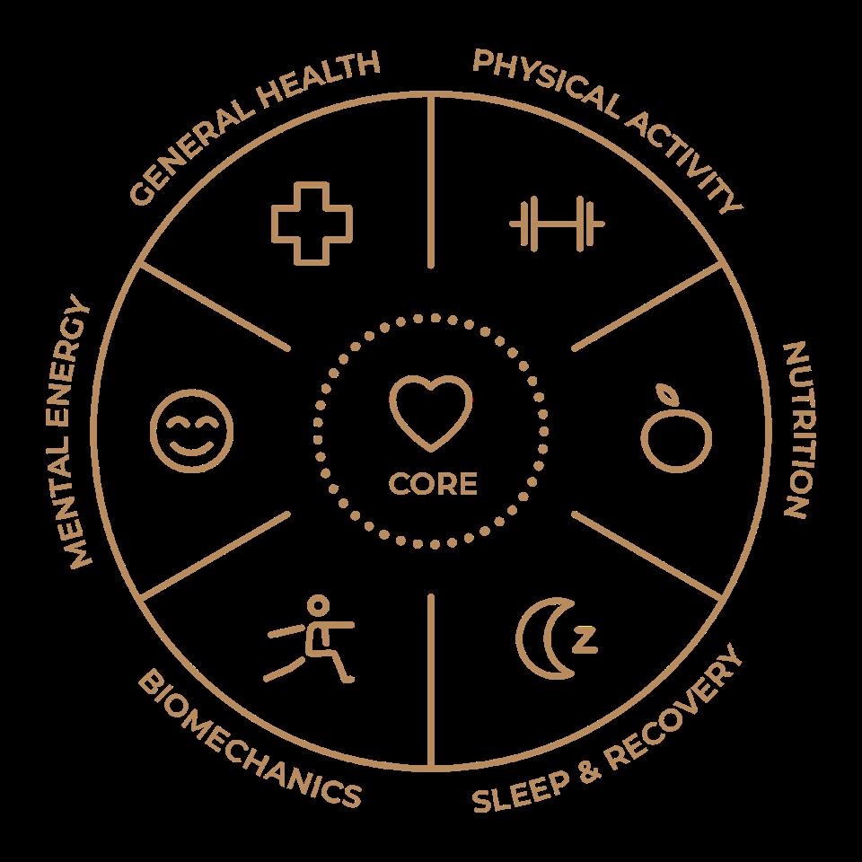 Hintsa Performance, The Circle of Better Life