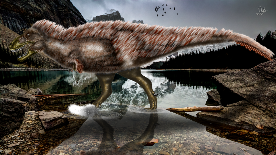 Artist's rendering of T. rex.
