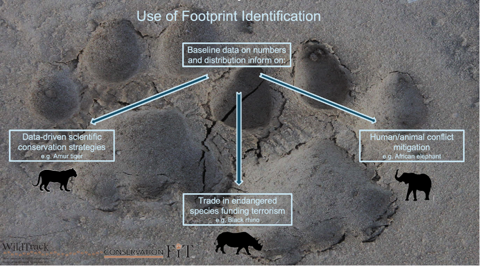 Use of Footprint Identification