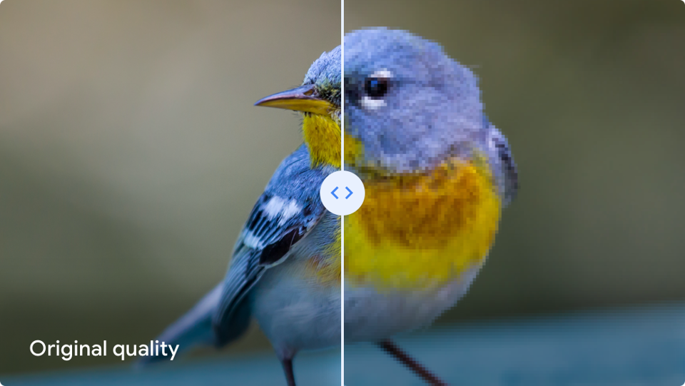 An image showing the difference between Google Photos' Original and High Quality options.