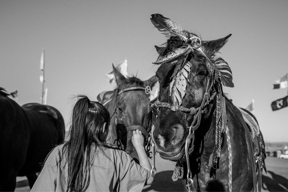 Black-and-white image of a girl with two horses. One horse is decorated with feathers.