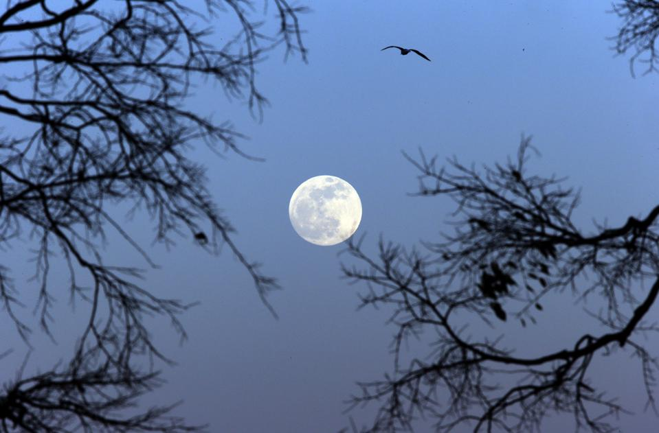 Do Supermoons Matter? Yes! Why You Need To See Tonight's 'Equinox Supermoon' For Its 'Moon Illusion'
