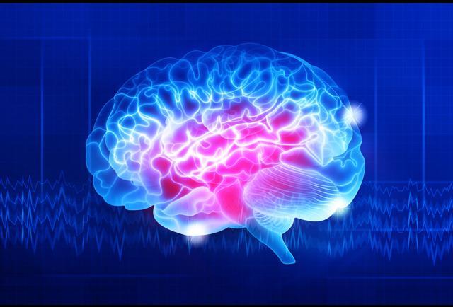 neuroscience for leadership harnessing the brain gain advantage pdf