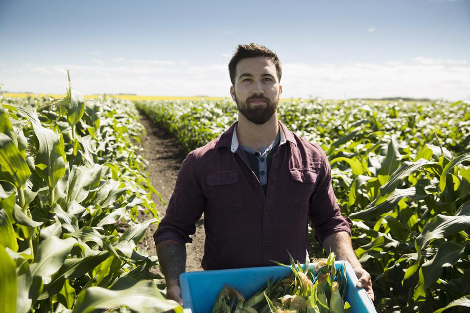 Broadband For Farmland? Here's Why It Matters For America