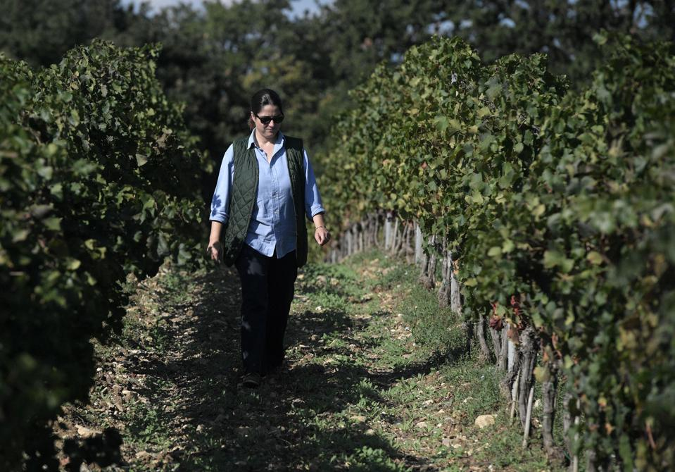 These Are The Five Most Exciting Wine Estates In Italy Right Now