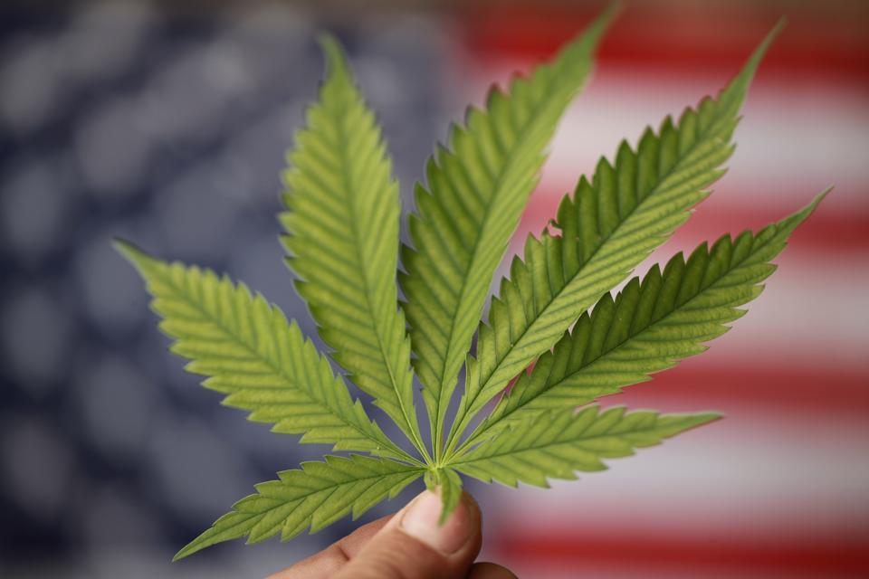 Marijuana Legalization Bills Are Advancing In Several States