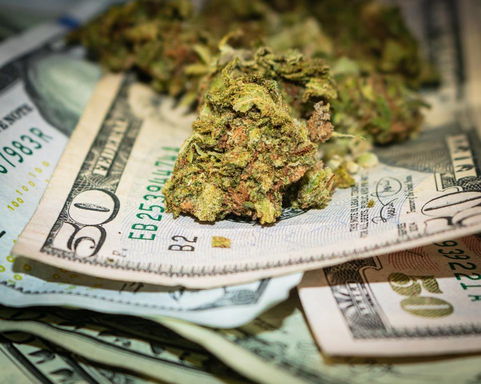 Picking Hot Marijuana Stocks And The 5 Ways To Choose Winners
