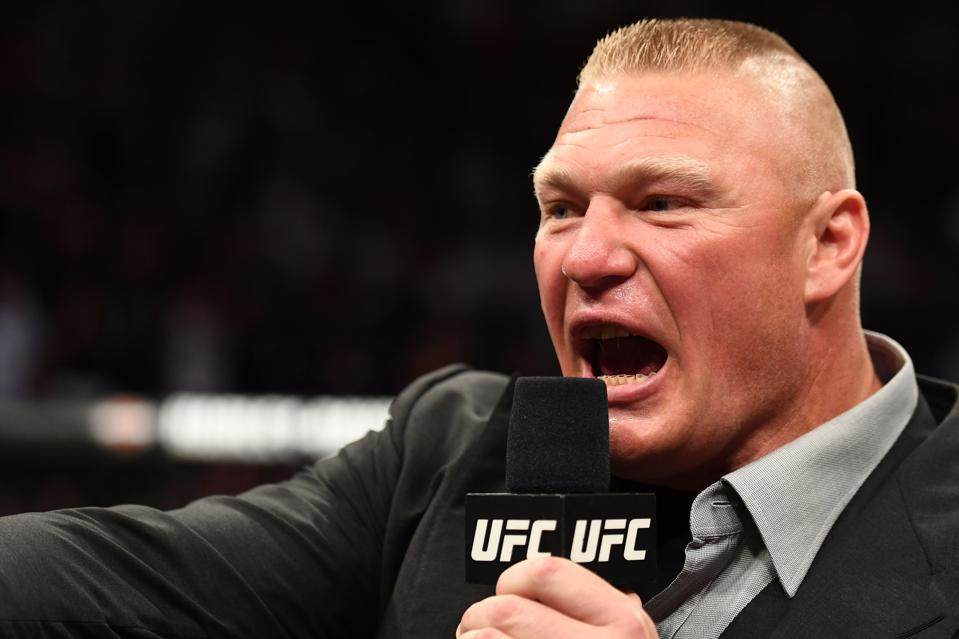 Image result for Brock Lesnar ufc 226