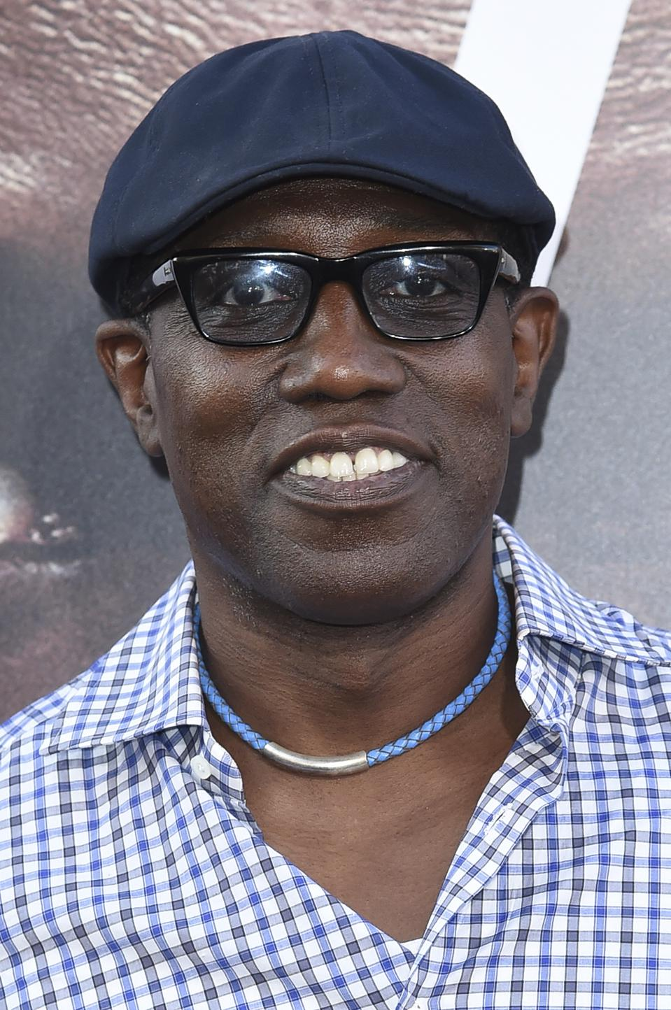 Wesley Snipes Loses $23.5 Million Tax Case, Offers IRS Tiny 4% Compromise