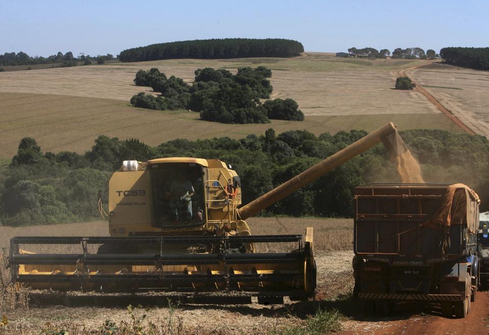 Brazil Meltdown Commodities