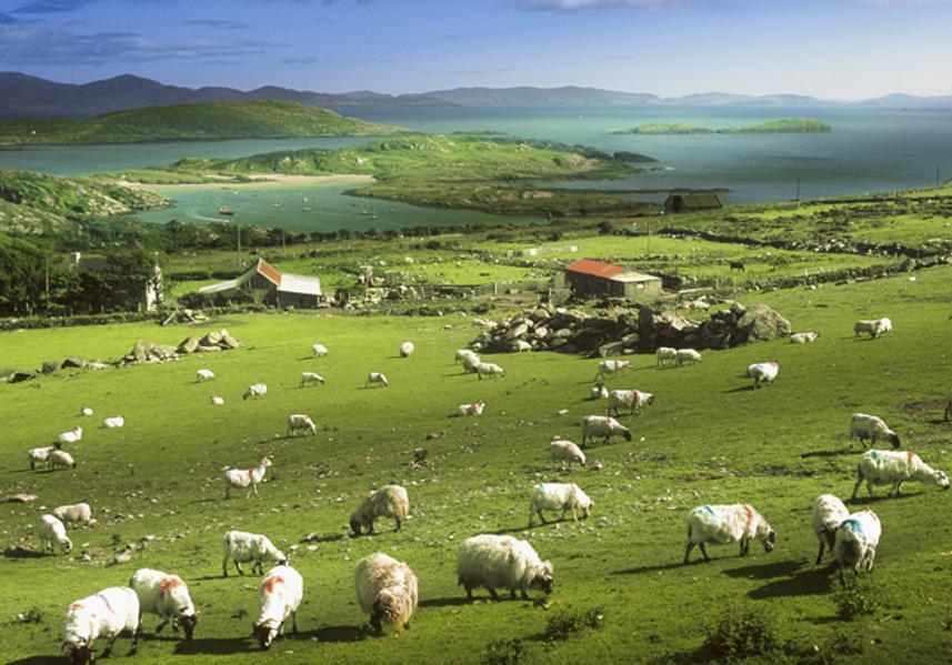 11 Ireland World's Happiest Countries