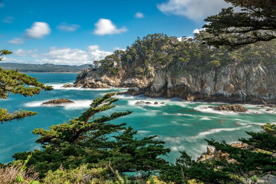 Point Lobos State Park near Carmel-by-the-Sea