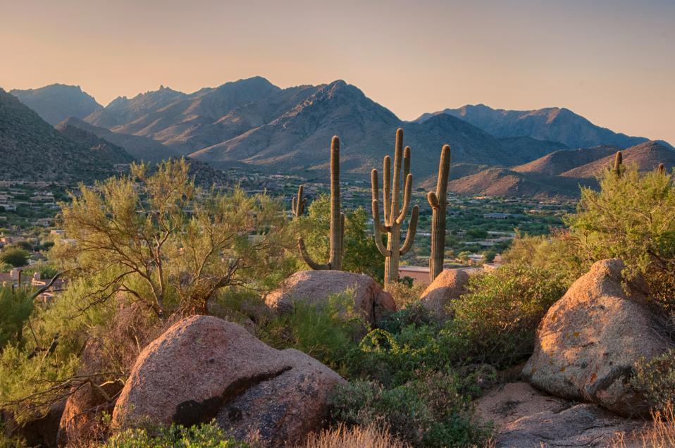 Pinnacle Peak Park as sun rises over cactus and hiking trails.