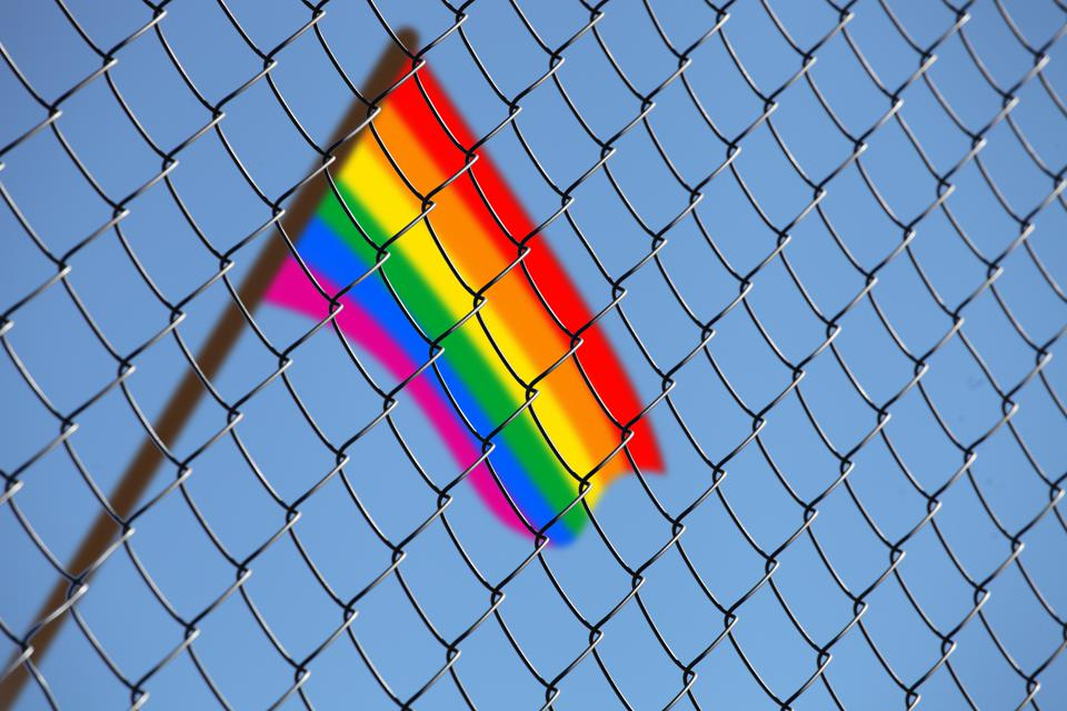 flag of LGBT over the fence