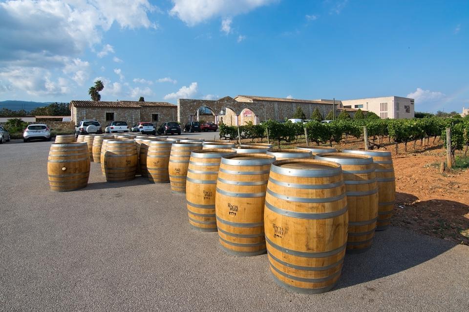 Fûts de vin en chêne à l'extérieur du grand producteur de vin Macia Batle