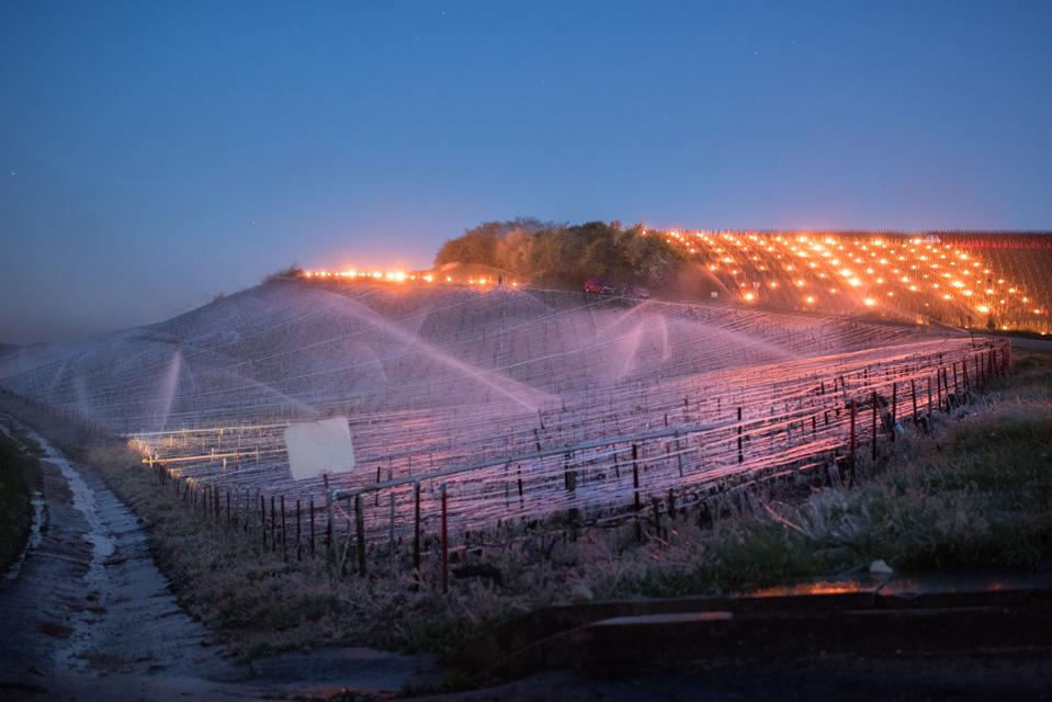 Fight against late spring frost in vineyards