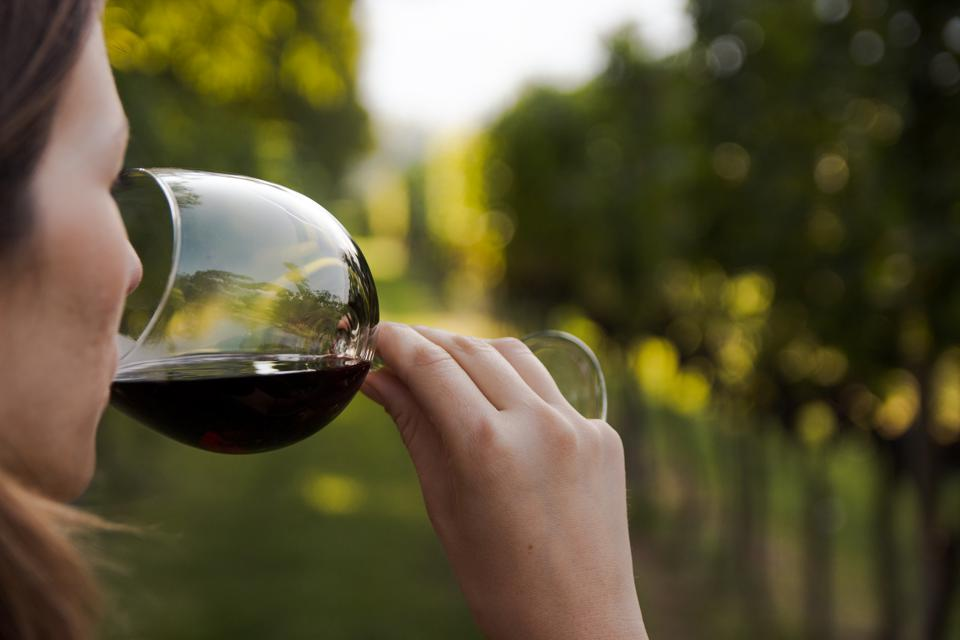 4 Specific Challenges Of Pregnancy And New Motherhood While Working In Wine