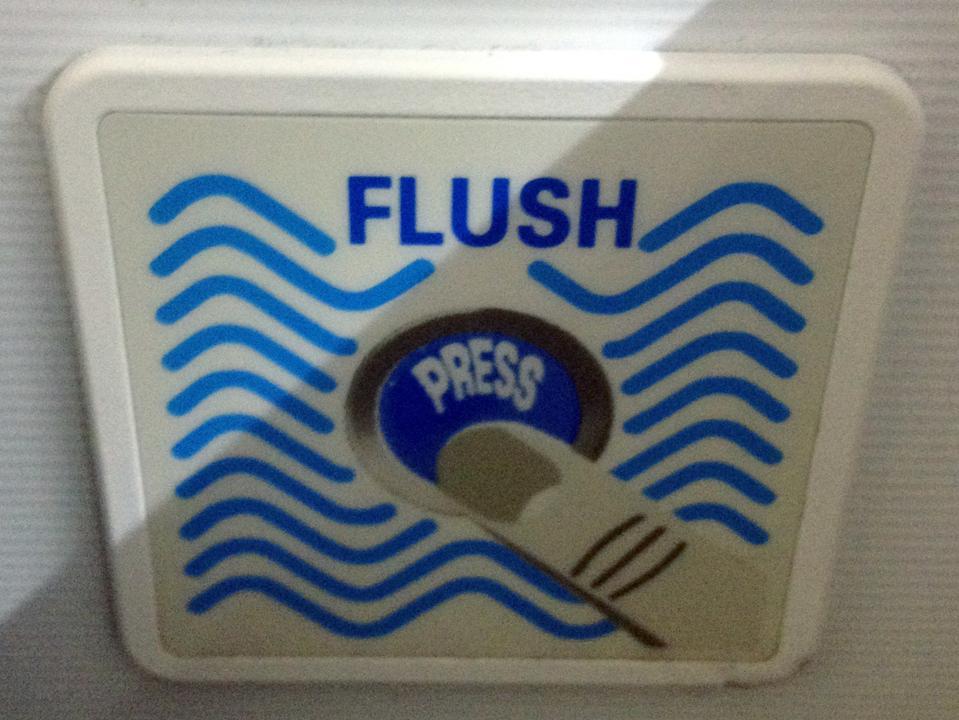Airplane toilet flush