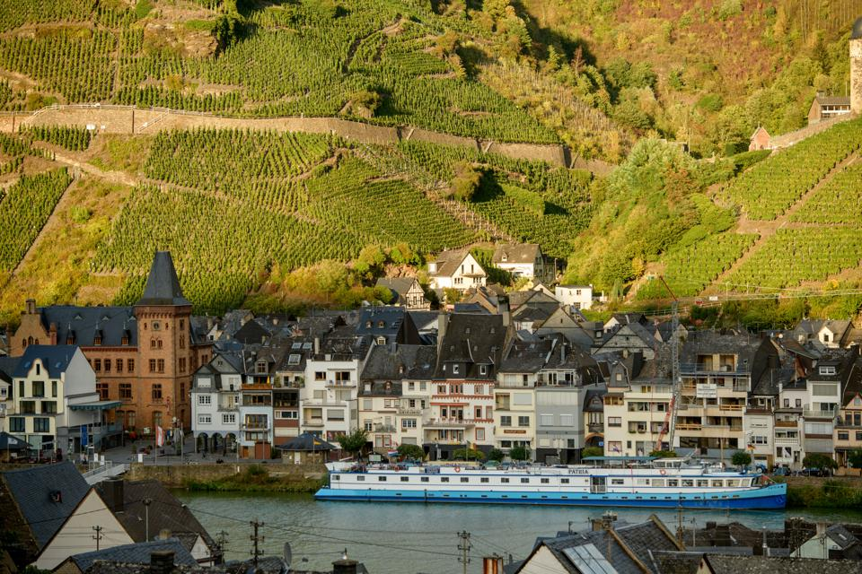Winemakers Harvest Grapes In Mosel Region, German wine