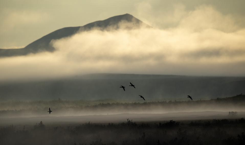 Methane gas seeps out of Esieh Lake in Alaska.