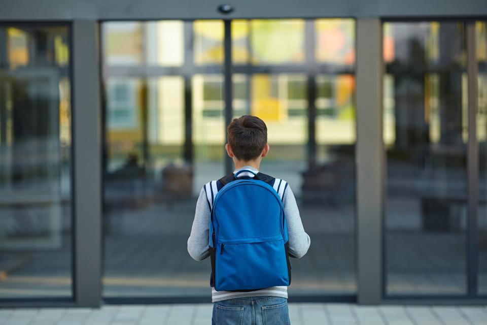 Schoolboy stands in front of the school door