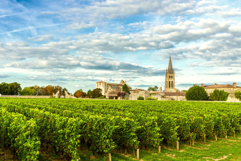 Vineyards of Saint Emilion, Bordeaux Vineyards in France