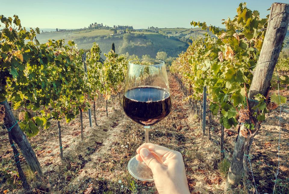 Glass of wine in hand of tourist in a natural landscape of Tuscany, with green valley of grapes. Wine beverage tasting in Italy during harvest