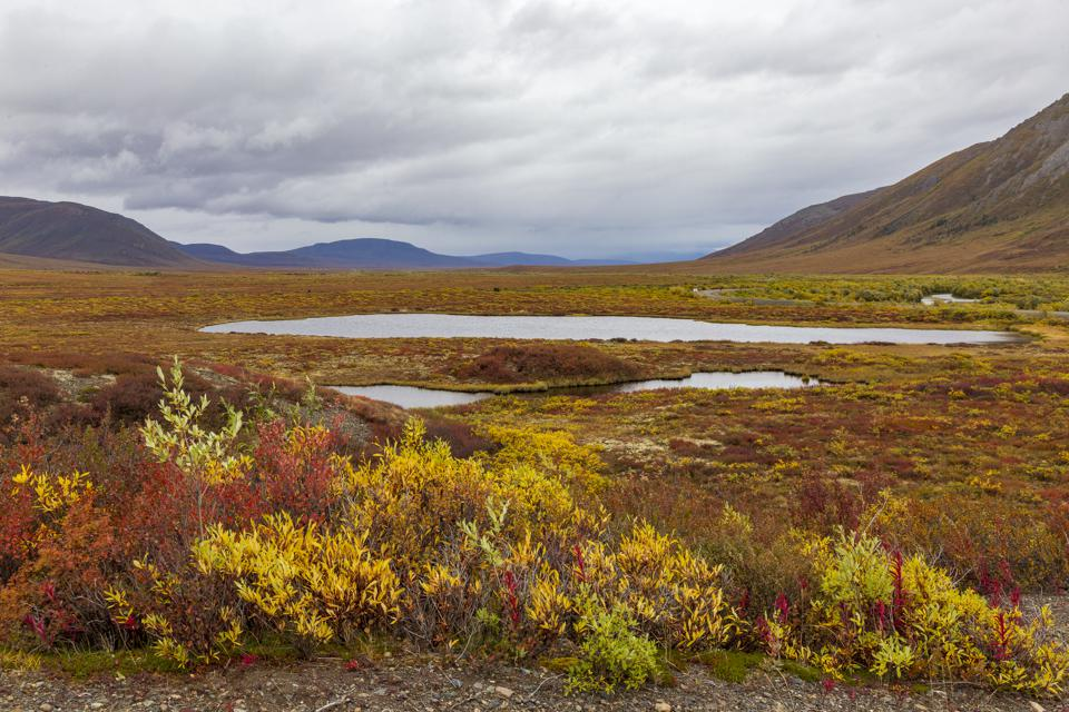Thawing Permafrost Is Unlikely To Increase Global Warming, Scientists Find