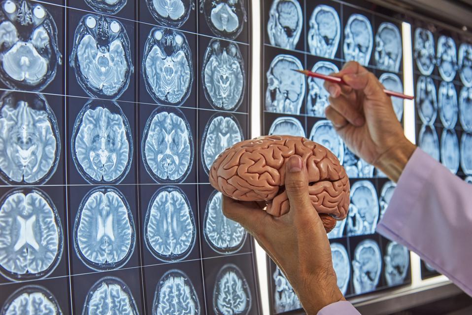 A neurosurgeon holding brain model and pointing at brain MRI