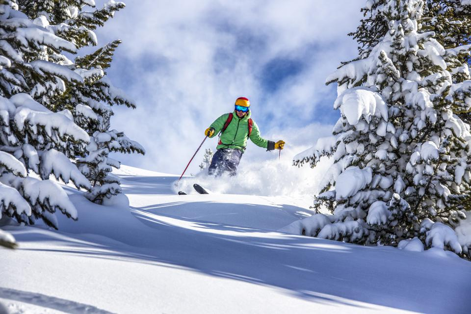 Freeride skier charging down through the forest in fresh powder, Kuhtai, Austria