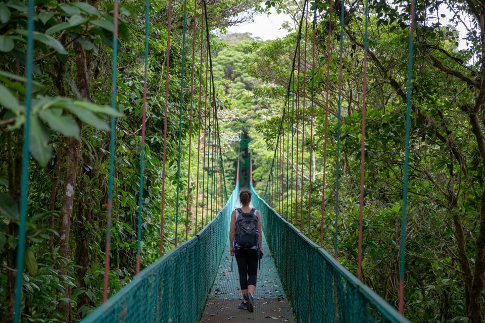 hanging bridge Monteverde, Costa Rica