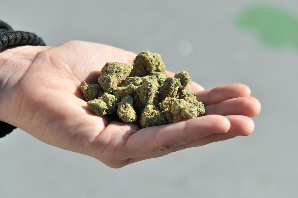 Nevada has pardoned past convictions for minor marijuana convictions.