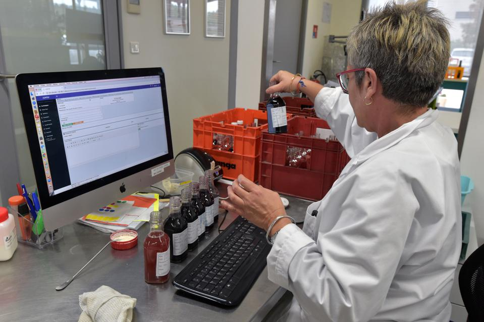 An oenologist prepares wine samples at the Dubernet oenological laboratory
