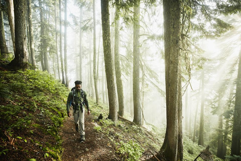 Man meditating while hiking along trail in forest on foggy morning